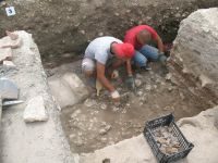 Chronicle of the Archaeological Excavations in Romania, 2009 Campaign. Report no. 27, Hârşova, La Cetate (Carsium)<br /><a href='http://foto.cimec.ro/cronica/2009/sistematice/027/06-HARSOVA-S-1-Pavajul-din-fata-portii.jpg' target=_blank>Display the same picture in a new window</a>