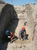 Chronicle of the Archaeological Excavations in Romania, 2009 Campaign. Report no. 27, Hârşova, La Cetate (Carsium)<br /><a href='http://foto.cimec.ro/cronica/2009/sistematice/027/20-HARSOVA-S-II-T1-Zidul-de-est.jpg' target=_blank>Display the same picture in a new window</a>