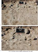 Cronica Cercetărilor Arheologice din România, Campania 2009. Raportul nr. 39, Luncaviţa, Cetăţuia<br /><a href='http://foto.cimec.ro/cronica/2009/sistematice/039/Pl-II.jpg' target=_blank>Priveşte aceeaşi imagine într-o fereastră nouă</a>
