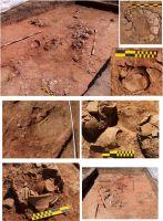 Cronica Cercetărilor Arheologice din România, Campania 2009. Raportul nr. 41, Mălăeştii De Jos, La Mornel<br /><a href='http://foto.cimec.ro/cronica/2009/sistematice/041/MALAIESTII-DE-JOS-PH-La-Mornel-locuinta-5-foto-1.jpg' target=_blank>Priveşte aceeaşi imagine într-o fereastră nouă</a>