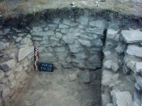Chronicle of the Archaeological Excavations in Romania, 2009 Campaign. Report no. 46, Murighiol, La Cetate (Bataraia)<br /><a href='http://foto.cimec.ro/cronica/2009/sistematice/046/4-murighiol-tl-halmyris-mur-09-t11-s1.jpg' target=_blank>Display the same picture in a new window</a>