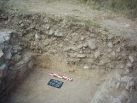 Chronicle of the Archaeological Excavations in Romania, 2009 Campaign. Report no. 46, Murighiol, La Cetate (Bataraia)<br /><a href='http://foto.cimec.ro/cronica/2009/sistematice/046/5-murighiol-tl-halmyris-mur-09-t11-s1-profil-nord.jpg' target=_blank>Display the same picture in a new window</a>