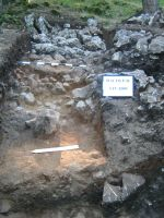 Chronicle of the Archaeological Excavations in Romania, 2009 Campaign. Report no. 59, Racoş, Piatra Detunată (Durduia)<br /><a href='http://foto.cimec.ro/cronica/2009/sistematice/059/4-Zidul-din-imaginea-3-incendiat-si-partial-prabusit.jpg' target=_blank>Display the same picture in a new window</a>