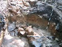 Chronicle of the Archaeological Excavations in Romania, 2009 Campaign. Report no. 59, Racoş, Piatra Detunată (Durduia)<br /><a href='http://foto.cimec.ro/cronica/2009/sistematice/059/5-Ceramica-hallstattiana.jpg' target=_blank>Display the same picture in a new window</a>