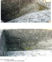 Chronicle of the Archaeological Excavations in Romania, 2009 Campaign. Report no. 63, Rîmnicelu, Popina<br /><a href='http://foto.cimec.ro/cronica/2009/sistematice/063/10Ramnicelu-santul-palisadei.JPG' target=_blank>Display the same picture in a new window</a>