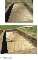 Chronicle of the Archaeological Excavations in Romania, 2009 Campaign. Report no. 63, Rîmnicelu, Popina<br /><a href='http://foto.cimec.ro/cronica/2009/sistematice/063/4Ramnicelu-santul-palisadei.JPG' target=_blank>Display the same picture in a new window</a>
