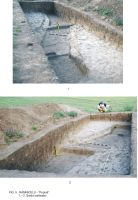Chronicle of the Archaeological Excavations in Romania, 2009 Campaign. Report no. 63, Rîmnicelu, Popina<br /><a href='http://foto.cimec.ro/cronica/2009/sistematice/063/5Ramnicelu-santul-palisadei.JPG' target=_blank>Display the same picture in a new window</a>