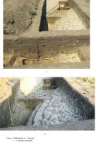 Chronicle of the Archaeological Excavations in Romania, 2009 Campaign. Report no. 63, Rîmnicelu, Popina<br /><a href='http://foto.cimec.ro/cronica/2009/sistematice/063/6Ramnicelu-santul-palisadei.JPG' target=_blank>Display the same picture in a new window</a>