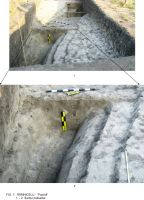 Chronicle of the Archaeological Excavations in Romania, 2009 Campaign. Report no. 63, Rîmnicelu, Popina<br /><a href='http://foto.cimec.ro/cronica/2009/sistematice/063/7Ramnicelu-santul-palisadei.JPG' target=_blank>Display the same picture in a new window</a>