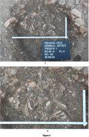 Chronicle of the Archaeological Excavations in Romania, 2009 Campaign. Report no. 77, Păuleni-Ciuc, Dâmbul Cetăţii (Dealul Cetăţii, Vardomb)<br /><a href='http://foto.cimec.ro/cronica/2009/sistematice/077/5-SOIMENI-CIOMORTAN-HR.jpg' target=_blank>Display the same picture in a new window</a>