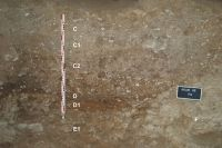 Cronica Cercetărilor Arheologice din România, Campania 2009. Raportul nr. 81, Târguşor, La Adam<br /><a href='http://foto.cimec.ro/cronica/2009/sistematice/081/4-La-Adam-Sectorul-EG-P41-P42.jpg' target=_blank>Priveşte aceeaşi imagine într-o fereastră nouă</a>