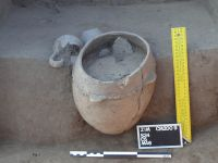 Chronicle of the Archaeological Excavations in Romania, 2009 Campaign. Report no. 92, Zimnicea, Câmpul Morţilor<br /><a href='http://foto.cimec.ro/cronica/2009/sistematice/092/03-ZIMNICEA-TR-CampulMortilor.jpg' target=_blank>Display the same picture in a new window</a>