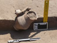Chronicle of the Archaeological Excavations in Romania, 2009 Campaign. Report no. 92, Zimnicea, Câmpul Morţilor<br /><a href='http://foto.cimec.ro/cronica/2009/sistematice/092/04-ZIMNICEA-TR-CampulMortilor.jpg' target=_blank>Display the same picture in a new window</a>