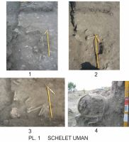 Chronicle of the Archaeological Excavations in Romania, 2010 Campaign. Report no. 1, Adamclisi, Cetate.<br /> Sector Sector-A_a.<br /><a href='http://foto.cimec.ro/cronica/2010/001/Sector-A-a/60892-08-Tropaeum-Traiani-Sector-A-schelet.jpg' target=_blank>Display the same picture in a new window</a>
