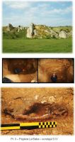 Chronicle of the Archaeological Excavations in Romania, 2010 Campaign. Report no. 13, Cheia, Vatra satului.<br /> Sector ILUSTRATIE-CHEIA-2017.<br /><a href='http://foto.cimec.ro/cronica/2010/013/63018-Cheia-Ct-3.JPG' target=_blank>Display the same picture in a new window</a>