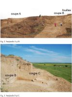 Chronicle of the Archaeological Excavations in Romania, 2010 Campaign. Report no. 14, Ciuperceni, La vii<br /><a href='http://foto.cimec.ro/cronica/2010/014/151718-02-Ciuperceni-TR-2-3.JPG' target=_blank>Display the same picture in a new window</a>