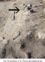 Cronica Cercetărilor Arheologice din România, Campania 2010. Raportul nr. 19, Garvăn, Bisericuţa (Bisericuţa)<br /><a href='http://foto.cimec.ro/cronica/2010/019/160635-03-Garvan-TL-3.JPG' target=_blank>Priveşte aceeaşi imagine într-o fereastră nouă</a>
