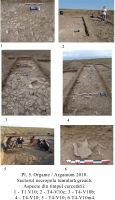 Chronicle of the Archaeological Excavations in Romania, 2010 Campaign. Report no. 31, Jurilovca, Zimbru 2<br /><a href='http://foto.cimec.ro/cronica/2010/031/160653-Orgame-Argamum-TL-5.jpg' target=_blank>Display the same picture in a new window</a>