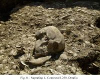 Chronicle of the Archaeological Excavations in Romania, 2010 Campaign. Report no. 48, Pietrele, Gorgana<br /><a href='http://foto.cimec.ro/cronica/2010/048/101038-01-Pietrele-GR-8.jpg' target=_blank>Display the same picture in a new window</a>