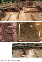 Chronicle of the Archaeological Excavations in Romania, 2010 Campaign. Report no. 73, Poşta, Cotul Celicului (Celic Dere)<br /><a href='http://foto.cimec.ro/cronica/2010/073/160412-08-Frecatei-TL-1.jpg' target=_blank>Display the same picture in a new window</a>