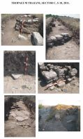 Chronicle of the Archaeological Excavations in Romania, 2011 Campaign. Report no. 1, Adamclisi, Cetate.<br /> Sector SECTOR C.<br /><a href='http://foto.cimec.ro/cronica/2011/001/SECTOR-C/tt-2011-sector-c-fig-1.jpg' target=_blank>Display the same picture in a new window</a>