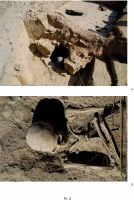 Chronicle of the Archaeological Excavations in Romania, 2011 Campaign. Report no. 32, Isaccea, La Pontonul Vechi (Cetate, Eski-kale)<br /><a href='http://foto.cimec.ro/cronica/2011/032/pl-5.jpg' target=_blank>Display the same picture in a new window</a>