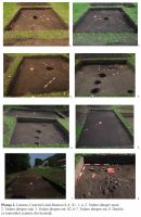 Chronicle of the Archaeological Excavations in Romania, 2011 Campaign. Report no. 38, Lăzarea, Castelul Lazăr (Casa Doamnei, Asszonyház)<br /><a href='http://foto.cimec.ro/cronica/2011/038/plansa-2.jpg' target=_blank>Display the same picture in a new window</a>