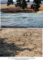 Cronica Cercetărilor Arheologice din România, Campania 2011. Raportul nr. 39, Luncaviţa, Cetăţuia<br /><a href='http://foto.cimec.ro/cronica/2011/039/pl-vi.jpg' target=_blank>Priveşte aceeaşi imagine într-o fereastră nouă</a>
