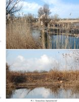 Cronica Cercetărilor Arheologice din România, Campania 2011. Raportul nr. 43, Maliuc, Taraschina<br /><a href='http://foto.cimec.ro/cronica/2011/043/Pl-I.jpg' target=_blank>Priveşte aceeaşi imagine într-o fereastră nouă</a>