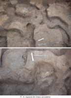 Cronica Cercetărilor Arheologice din România, Campania 2011. Raportul nr. 43, Maliuc, Taraschina<br /><a href='http://foto.cimec.ro/cronica/2011/043/Pl-III.jpg' target=_blank>Priveşte aceeaşi imagine într-o fereastră nouă</a>