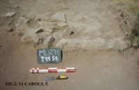 Chronicle of the Archaeological Excavations in Romania, 2011 Campaign. Report no. 45, Murighiol, La Cetate (Bataraia).<br /> Sector SECTOR TURNUL 11.<br /><a href='http://foto.cimec.ro/cronica/2011/045/SECTOR-TURNUL-11/figura-2-s1-carou-5.jpg' target=_blank>Display the same picture in a new window</a>