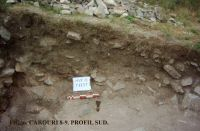 Chronicle of the Archaeological Excavations in Romania, 2011 Campaign. Report no. 45, Murighiol, La Cetate (Bataraia).<br /> Sector SECTOR TURNUL 11.<br /><a href='http://foto.cimec.ro/cronica/2011/045/SECTOR-TURNUL-11/figura-6-carouri-8-9-profil-sud.jpg' target=_blank>Display the same picture in a new window</a>