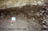 Chronicle of the Archaeological Excavations in Romania, 2011 Campaign. Report no. 45, Murighiol, La Cetate (Bataraia).<br /> Sector SECTOR TURNUL 11.<br /><a href='http://foto.cimec.ro/cronica/2011/045/SECTOR-TURNUL-11/figura-7-carouri-8-9-profil-nord.jpg' target=_blank>Display the same picture in a new window</a>