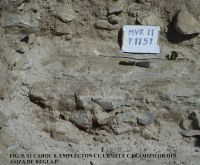 Chronicle of the Archaeological Excavations in Romania, 2011 Campaign. Report no. 45, Murighiol, La Cetate (Bataraia).<br /> Sector SECTOR TURNUL 11.<br /><a href='http://foto.cimec.ro/cronica/2011/045/SECTOR-TURNUL-11/figura-8-s1-carou-8-emplecton-asiza.jpg' target=_blank>Display the same picture in a new window</a>