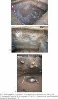 Cronica Cercetărilor Arheologice din România, Campania 2011. Raportul nr. 58, Pietroasa Mic&#259;, Gruiu D&#259;rii<br /><a href='http://foto.cimec.ro/cronica/2011/058/Gruiu-Darii-2011-plansa01.jpg' target=_blank>Priveşte aceeaşi imagine într-o fereastră nouă</a>