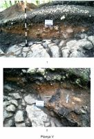 Chronicle of the Archaeological Excavations in Romania, 2011 Campaign. Report no. 61, Racoş, Piatra Detunată (Durduia)<br /><a href='http://foto.cimec.ro/cronica/2011/061/05-plansa-v.jpg' target=_blank>Display the same picture in a new window</a>