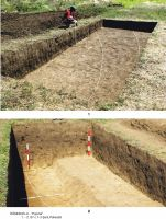 Chronicle of the Archaeological Excavations in Romania, 2011 Campaign. Report no. 64, Rîmnicelu, Popina<br /><a href='http://foto.cimec.ro/cronica/2011/064/ramn-p-2011-03.jpg' target=_blank>Display the same picture in a new window</a>