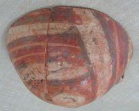 Cronica Cercetărilor Arheologice din România, Campania 2011. Raportul nr. 69, Sc&#226;nteia, La Nuci (Dealul Bode&#351;tilor)<br /><a href='http://foto.cimec.ro/cronica/2011/069/Fig-1-Gr173-130-243cm.jpg' target=_blank>Priveşte aceeaşi imagine într-o fereastră nouă</a>