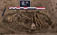 Cronica Cercetărilor Arheologice din România, Campania 2011. Raportul nr. 74, Sultana, Malu Roşu<br /><a href='http://foto.cimec.ro/cronica/2011/074/fig-2.JPG' target=_blank>Priveşte aceeaşi imagine într-o fereastră nouă</a>