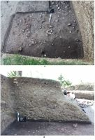 Chronicle of the Archaeological Excavations in Romania, 2011 Campaign. Report no. 77, Şoimeni, Várdomb (Ciomortan, Várdomb)<br /><a href='http://foto.cimec.ro/cronica/2011/077/fig-01.JPG' target=_blank>Display the same picture in a new window</a>