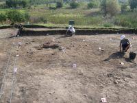 Chronicle of the Archaeological Excavations in Romania, 2011 Campaign. Report no. 91, Vitanesti, La Măgurice (Teleor 007)<br /><a href='http://foto.cimec.ro/cronica/2011/091/aspecte-de-sapatura.jpg' target=_blank>Display the same picture in a new window</a>