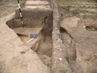 Chronicle of the Archaeological Excavations in Romania, 2011 Campaign. Report no. 92, Vlădeni, Coasta Belciugului<br /><a href='http://foto.cimec.ro/cronica/2011/092/fig-11.jpg' target=_blank>Display the same picture in a new window</a>