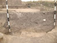 Chronicle of the Archaeological Excavations in Romania, 2011 Campaign. Report no. 92, Vlădeni, Coasta Belciugului<br /><a href='http://foto.cimec.ro/cronica/2011/092/fig-3.jpg' target=_blank>Display the same picture in a new window</a>