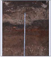 Cronica Cercetărilor Arheologice din România, Campania 2011. Raportul nr. 98, Bucureşti, Bd. Vasile Milea nr.3D, 5E, sector 6<br /><a href='http://foto.cimec.ro/cronica/2011/098/9.jpg' target=_blank>Priveşte aceeaşi imagine într-o fereastră nouă</a>