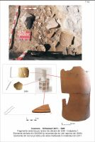 Chronicle of the Archaeological Excavations in Romania, 2011 Campaign. Report no. 110, Cozmeni, Köházkert (Conacul Béldi)<br /><a href='http://foto.cimec.ro/cronica/2011/110/t-10-mat-arh-s4b-corn-reconstr.jpg' target=_blank>Display the same picture in a new window</a>