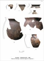 Chronicle of the Archaeological Excavations in Romania, 2011 Campaign. Report no. 110, Cozmeni, Köházkert (Conacul Béldi)<br /><a href='http://foto.cimec.ro/cronica/2011/110/t-11-mat-arh-incap-1.jpg' target=_blank>Display the same picture in a new window</a>