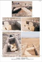Chronicle of the Archaeological Excavations in Romania, 2011 Campaign. Report no. 110, Cozmeni, Köházkert (Conacul Béldi)<br /><a href='http://foto.cimec.ro/cronica/2011/110/t-14-vederi.jpg' target=_blank>Display the same picture in a new window</a>