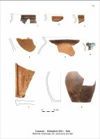 Chronicle of the Archaeological Excavations in Romania, 2011 Campaign. Report no. 110, Cozmeni, Köházkert (Conacul Béldi)<br /><a href='http://foto.cimec.ro/cronica/2011/110/t-8-mat-arh-int-pivn.jpg' target=_blank>Display the same picture in a new window</a>