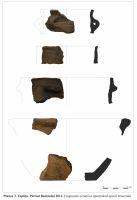 Cronica Cercetărilor Arheologice din România, Campania 2011. Raportul nr. 153, Topliţa<br /><a href='http://foto.cimec.ro/cronica/2011/153/Plansa-3.jpg' target=_blank>Priveşte aceeaşi imagine într-o fereastră nouă</a>