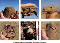 Chronicle of the Archaeological Excavations in Romania, 2011 Campaign. Report no. 171, Şoimuş, Teleghi (km 29+750 - 30+300 - Sector B)<br /><a href='http://foto.cimec.ro/cronica/2011/171/dsc00092.jpg' target=_blank>Display the same picture in a new window</a>